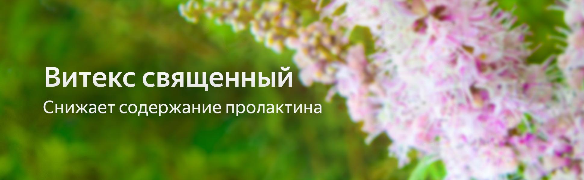 mladomaston_viteks